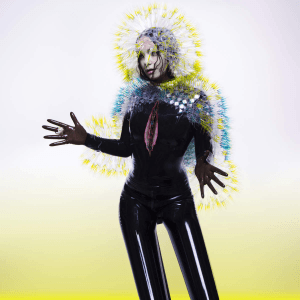 bjork_-_vulnicura_official_album_cover